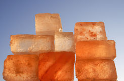 salt sten Royaltyfri Fotografi