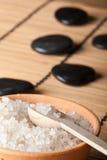 salt sten för aromatisk bunke Royaltyfri Bild