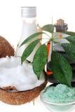 salt stenar för kokosnöt Arkivfoto
