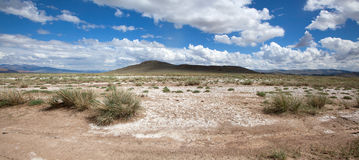 Salt steppe Royalty Free Stock Photos