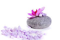 Salt, stone and orchid Royalty Free Stock Photos