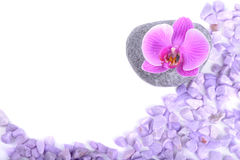 Salt, stone and orchid Royalty Free Stock Images