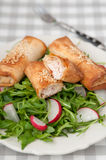 Salt strudel with trout Stock Images
