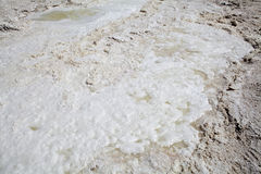 Salt surface crust Royalty Free Stock Photo