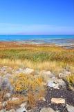 salt tillstånd för stor lakepark arkivfoto
