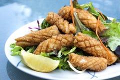 salt tioarmad bläckfisk för pepparsallad arkivbild