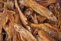 salt torkad fisk Arkivbilder