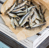 Salt torkad fisk på det bruna papperet Materiel-fisk Royaltyfri Fotografi