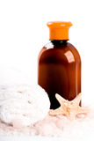 Salt, towel, body lotion and seastar Stock Images