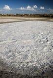 salt traditionellt för bacutafabrik Arkivfoton