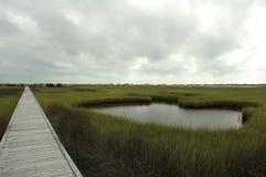 salt trail för marsh Fotografering för Bildbyråer
