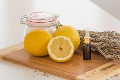 Salt uppsättning för lavendel- och citronbad royaltyfria foton