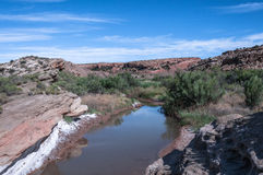 Salt Valley Wash  in Arches National Park, Utah Royalty Free Stock Images