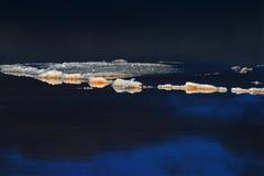 Salt vatten Arkivfoton