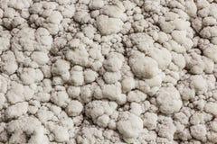 Salt on wall Stock Photo