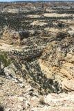 Salt Wash landscape, Utah Royalty Free Stock Images