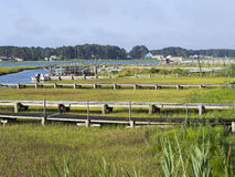 Salt Water Marsh and Docks Stock Photography