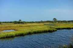 Salt Water Wetlands of Chincoteague Bay. This is Chincoteague Bay where there is a variety of wetlands and ecosystems shallow pools surrounded by marsh sedge Stock Photography