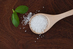 Salt and wood. Sea salt on wooden spoon and basil on wooden background Royalty Free Stock Photo