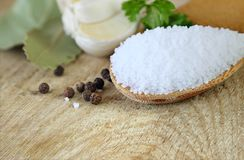 Salt in the Wooden Spoon Royalty Free Stock Images