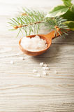 Salt in a wooden spoon Stock Photo