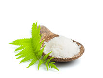 Salt in a wooden spoon Royalty Free Stock Photography