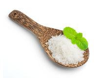 Salt in a wooden spoon Stock Images