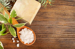 Salt in a wooden spoon and soap Royalty Free Stock Image