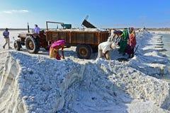 Salt Worker in India Stock Photo