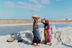 Salt Worker in India Royalty Free Stock Photos