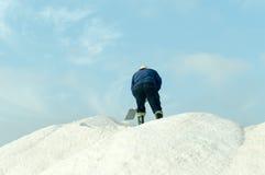 salt worker Stock Image