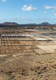 Salt works of Janubio, Lanzarote Stock Photography