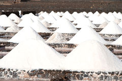 Salt works Salinas de Janubio in Lanzarote Stock Images