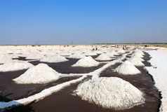 Salt works, Sambhar salt lake, Rajasthan, India Royalty Free Stock Photos