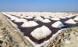 Salt works, Sambhar salt lake, Rajasthan, India Stock Images