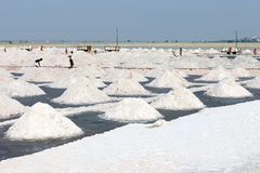 Salt works, Sambhar salt lake, Rajasthan, India Royalty Free Stock Photo