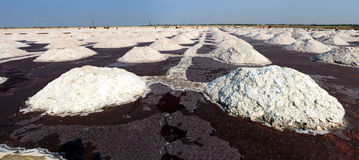 Salt works, Sambhar salt lake, Rajasthan, India Stock Photos