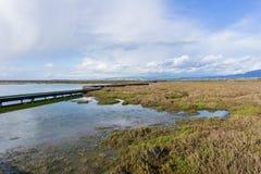 Salta damm och träsk, Don Edwards Wildlife Refuge, södra San Francisco Bay, Alviso, San Jose, Kalifornien royaltyfri fotografi