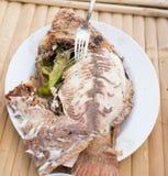 Salta den inrotade grillade fisken Royaltyfri Foto