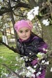Salta en el jardín una niña que lleva a cabo una rama de la cereza. Foto de archivo libre de regalías