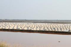 Salta fältet på Samut Sakhon, Thailand Arkivfoto