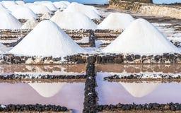 Salta högar i saltdammet av Janubio Royaltyfri Fotografi