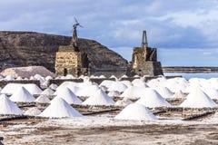 Salta högar i saltdammet av Janubio Arkivbilder