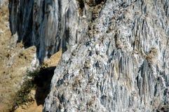 Salta insättningen, sedimentär geologisk skikt Royaltyfri Foto
