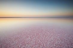 Salta och saltvatten av en rosa sjö som färgas av den microalgaeDunaliella salinaen på solnedgången Royaltyfri Bild