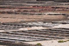Salta pannor av Janubio Arkivfoto