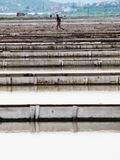 Salta pannor av sicciole, Pirano, Slovenien, Europa Arkivfoto
