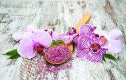 Salta Spa och orkidér Royaltyfri Fotografi