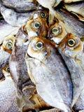 saltad torkad fisk Royaltyfri Fotografi