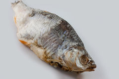saltad torkad fisk fotografering för bildbyråer